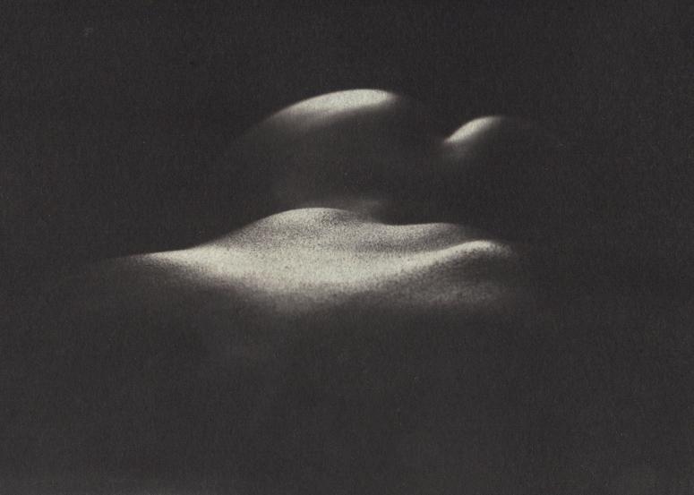 platynotypia-Brzozowski-011